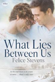 What Lies Between Us by Felice Stevens