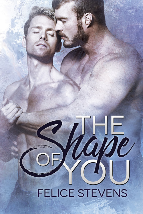 The Shape of You by Felice Stevens